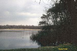 Hapse polder 1985 (1).jpg