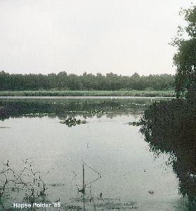 Hapse polder 1985 (2).jpg