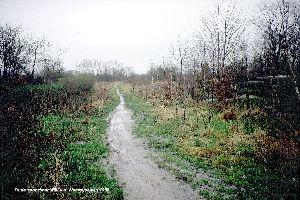 Oude spoordijk Mill v.a. Wanroijseweg 1988.jpg