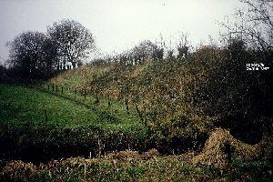 Spoordijk bij Oeffelt 1987.jpg
