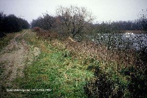 spoordijk Oeffelt-Vilt 1987.jpg