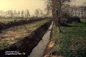 Ruilverkaveling Langenboom 1984.jpg