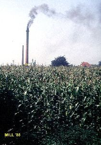 Luchtverontreiniging Van hout Mill 1985.jpg