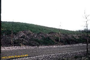 Vuilnisbelt Mill 1985-2.jpg