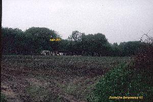 Vuilnisbelt Mill 1985.jpg