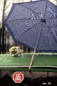 Stop zure regen 1985.jpg